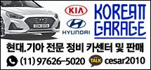 브라질현대/기아자동차 전문 카센터