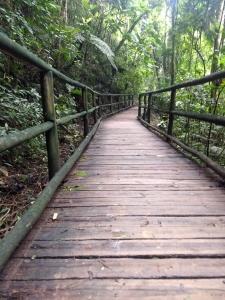 Parque Estadual do Jaraguá (자라과 주립공원) 방문기