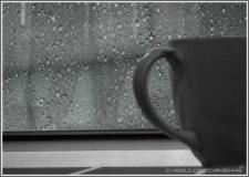 블랙 커피.....#2